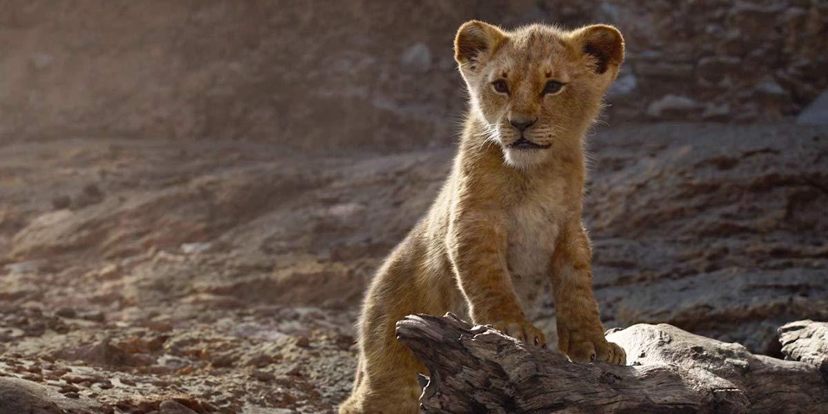photo-realistic baby Simba in Jon Favreau's The Lion King
