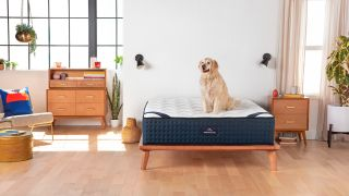 Save $200 on a DreamCloud sleep mattress ahead of the Prime Day sales