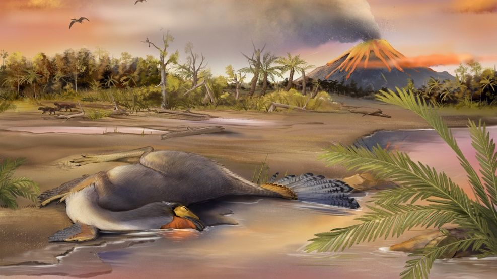 These 125 million-year-old fossils may hold dinosaur DNA