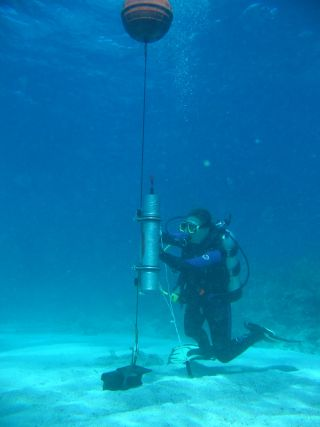 anthropogenic noise, sl, nsf, marine biology, acoustics, coral reefs