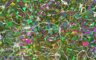 Earth from Space: Chernozem Cropland