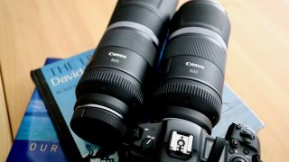 Canon RF 600mm and 800mm f/11 super telephoto lenses