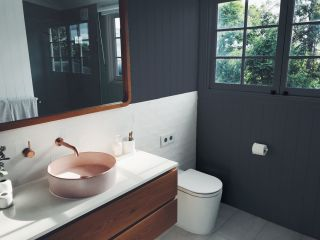 Best bathroom paint COAT 2AM very dark blue bathroom paint