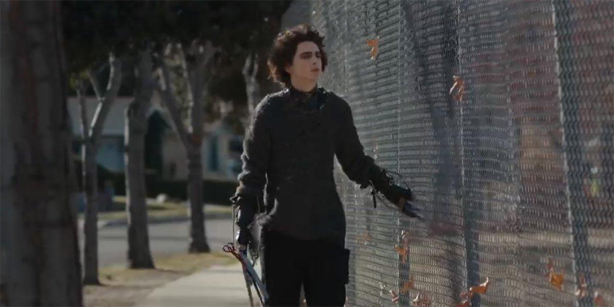 Tim Burton Reacts To Timothee Chalamet's Edward Scissorhands Commercial