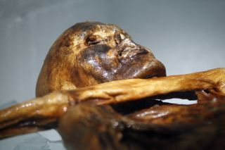 Otzi the Iceman mummy was discovered in the Italian Alps in 1991.