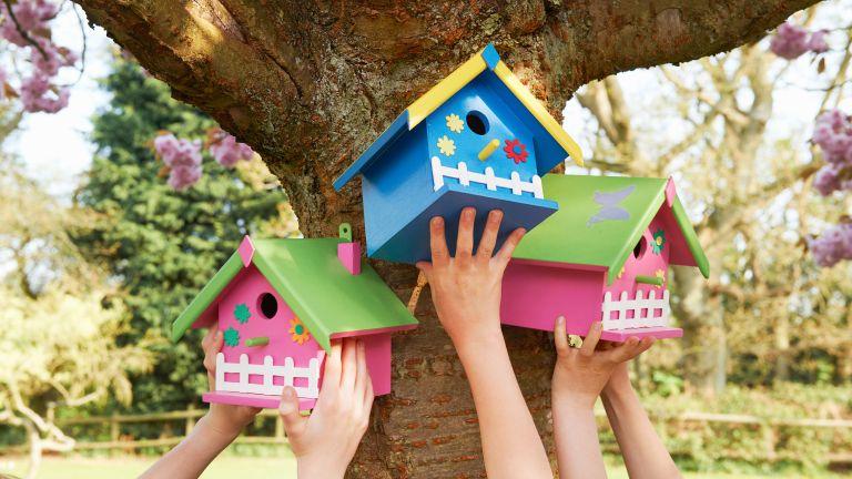 bird house design ideas: bright colors