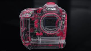 The body construction of the Canon EOS R3 mirrorless camera