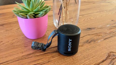 Sony SRS-XB13 Bluetooth-Lautsprecher auf einem Tisch neben einer Pflanze