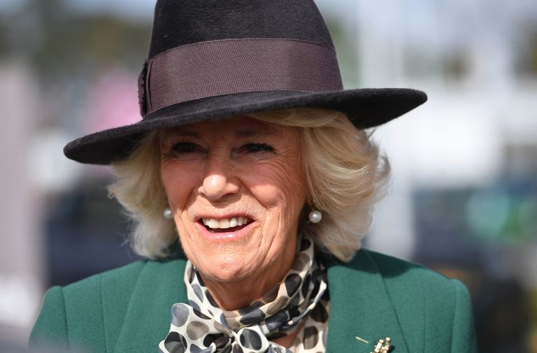 camilla duchess cornwall silver line charity phone call