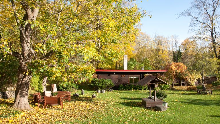 Fall garden with lawn and well