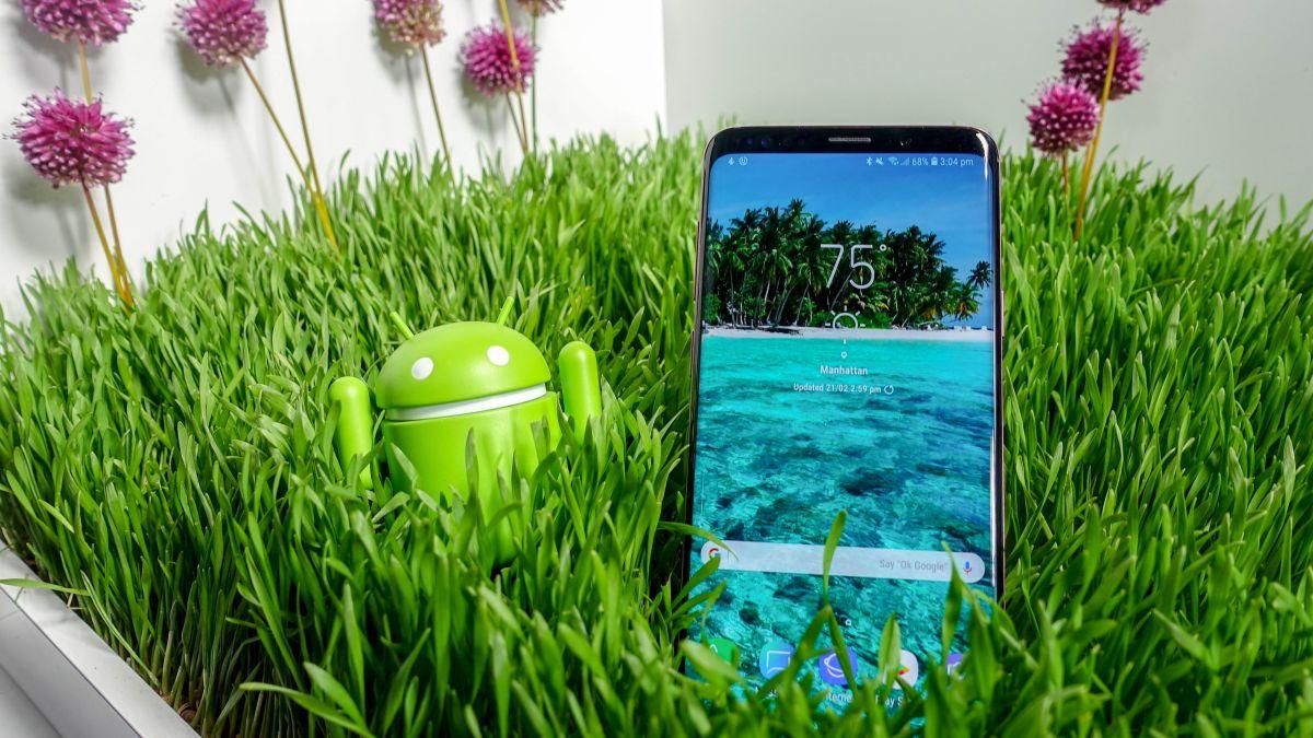 Samsung Galaxy S9 Plus vs Samsung Galaxy Note 8 | TechRadar