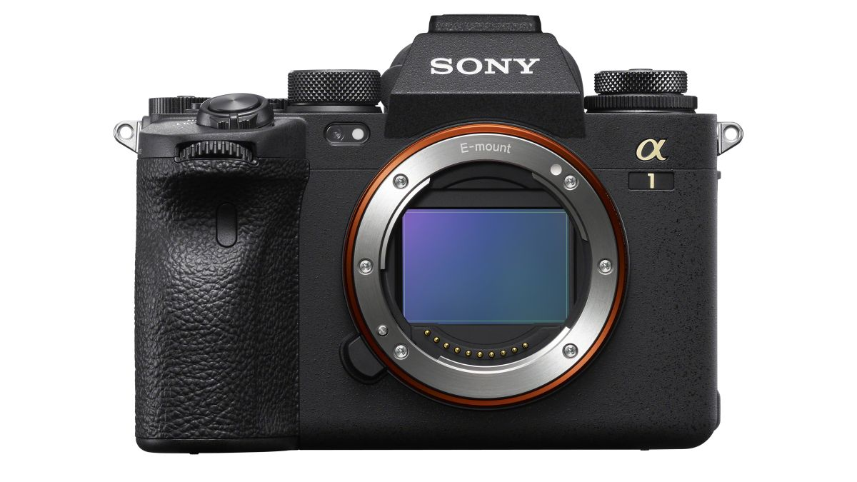 Did the Sony A1 just blow the Canon EOS R5 out of the water? - Digital Camera World