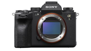 Did the Sony A1 just blow the Canon EOS R5 out of the water?
