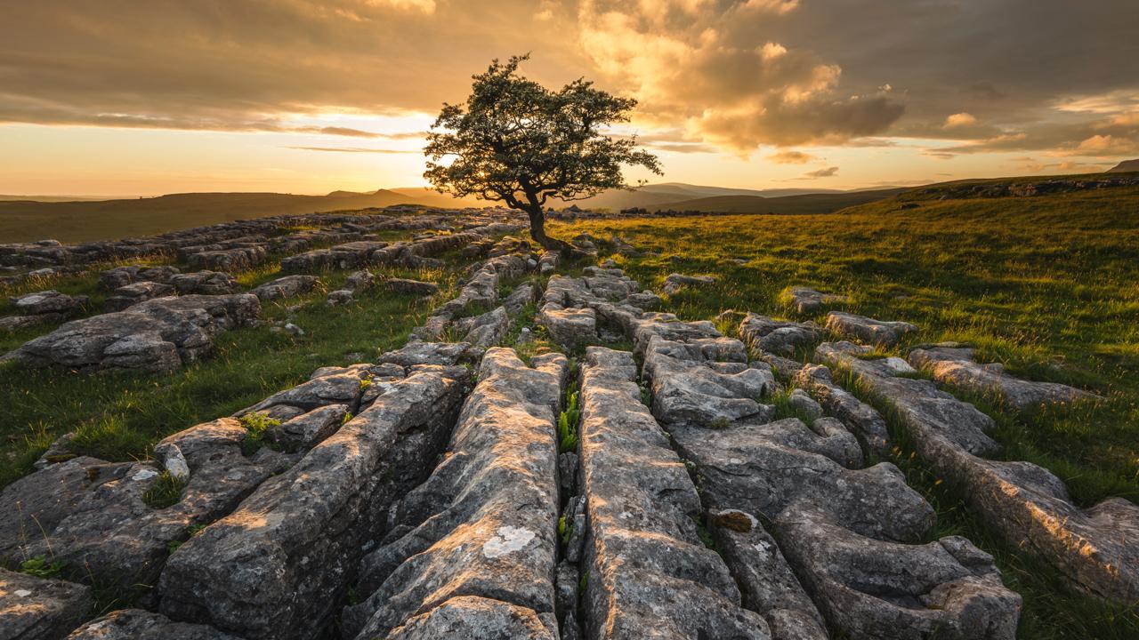 Best Landscape Lens