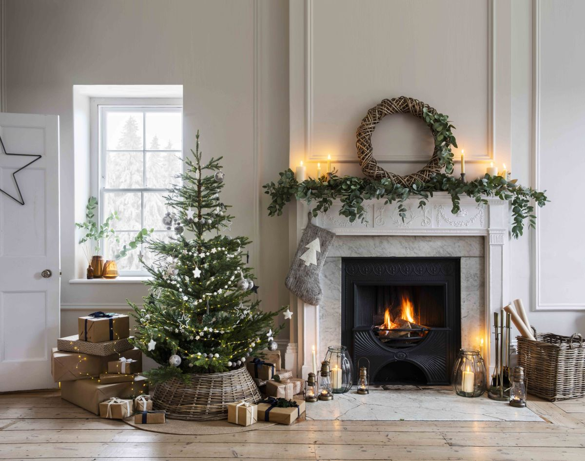 Why You Should Rent Your Christmas Tree To Be Eco-festive