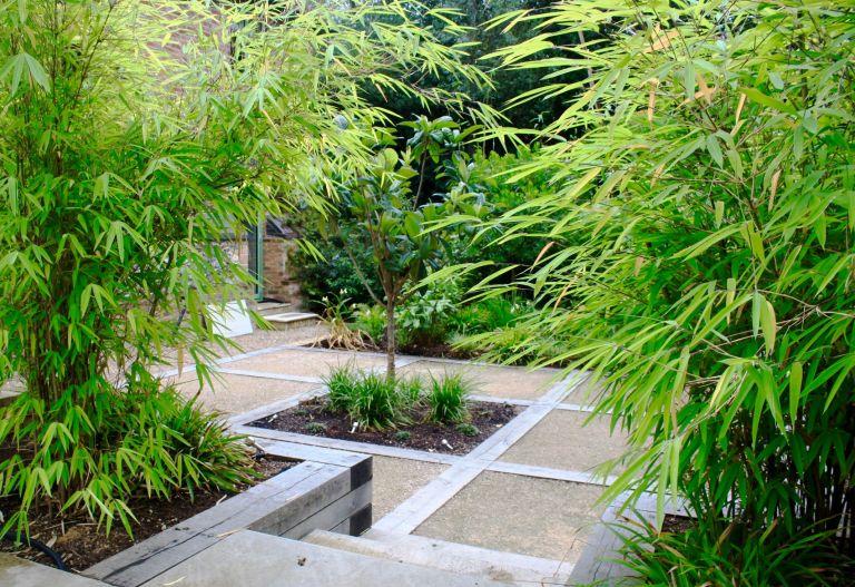Peter reader garden planting garden design mistakes