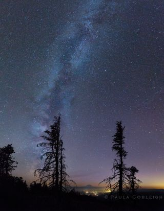 Milky Way Over Mount Rainier National Park