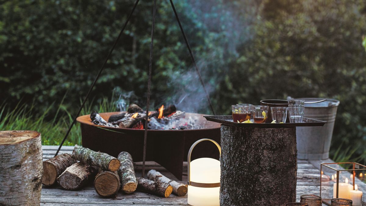 5 ways to use ashes in the garden – for composting, improving soil and more