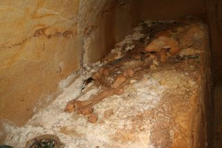 incinerated human remains in an etruscan tomb
