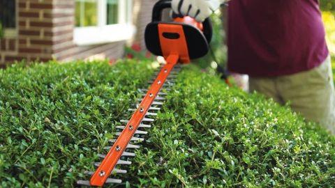 Black & Decker HH2455 hedge trimmer review