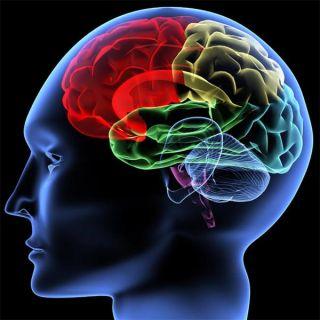 brain-generic-101221-02