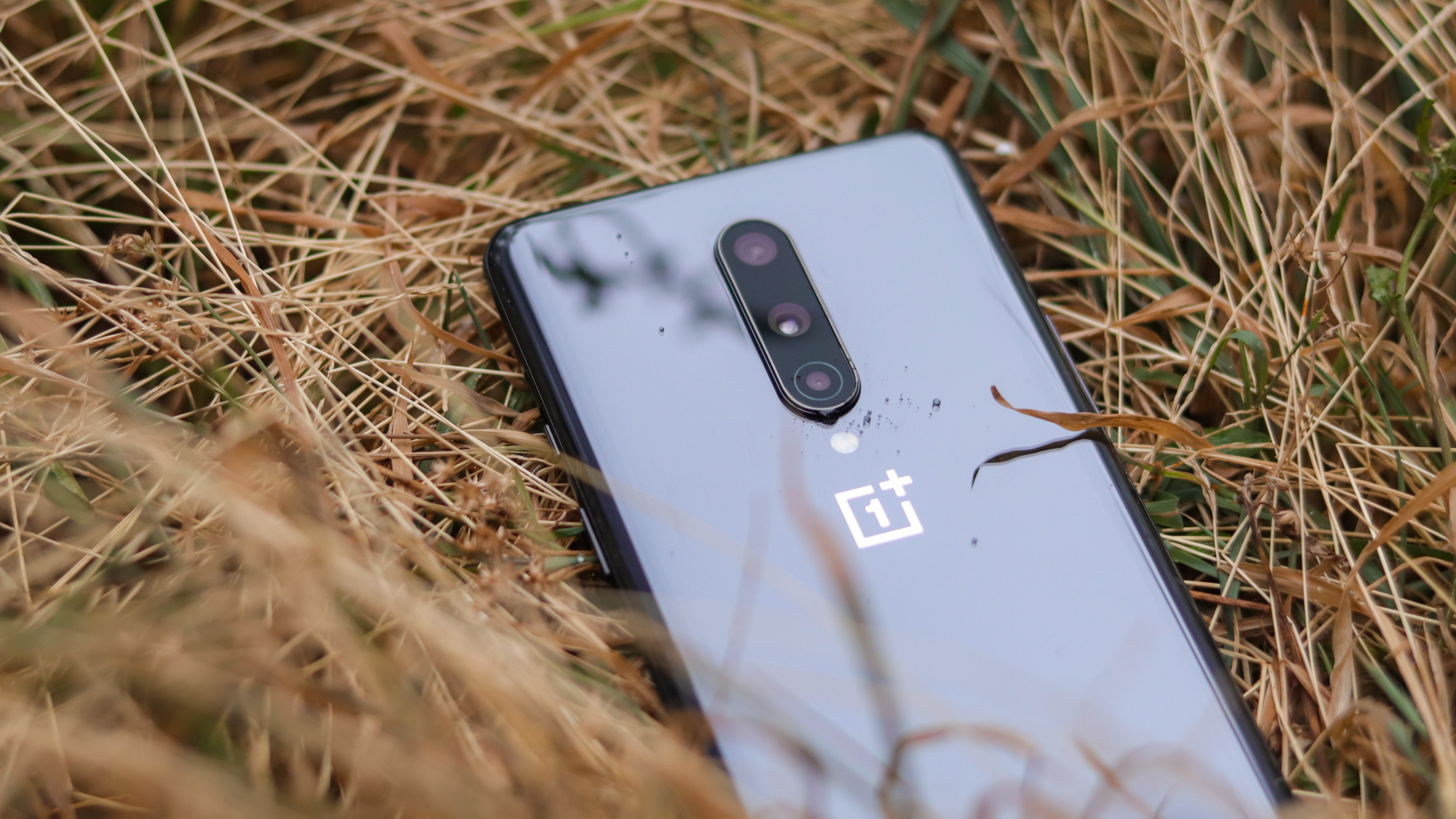 OnePlus 8T leak shows specs, and the price may be lower than first thought thumbnail