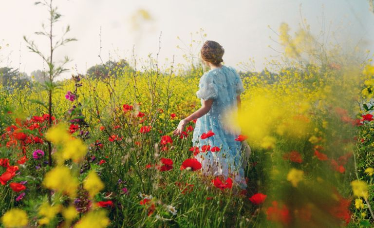 Rear View Of Woman Standing On Flowers Field Against Sky - stock photo