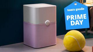 The Blueair Pure 211+ air purifier.