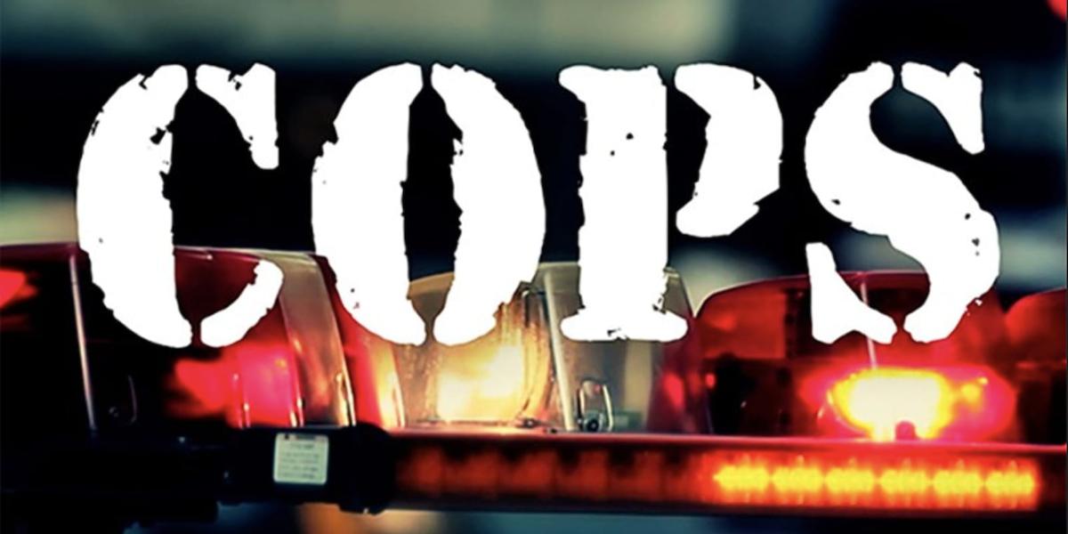 cops tv show logo