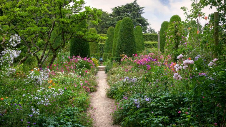 Expert tips for growing the perfect cottage garden: path