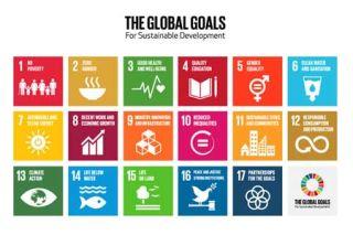 The 2030 UN Challenge – A Social Advocacy Project