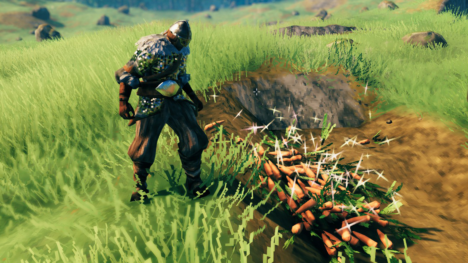 How to grow carrots in Valheim