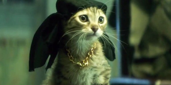 The Awesome Reason Keanu Tried To Avoid CGI Kittens