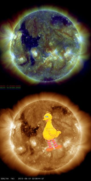A new photo from a NASA spacecraft shows what looks like Big Bird on the sun.