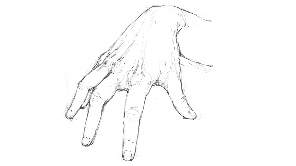 Refined drawing of a hand, with detail added in