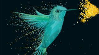 Vector artwork of a hummingbird