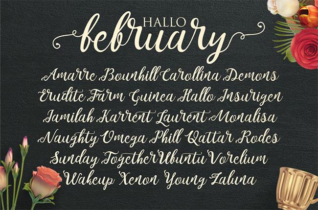 Calligraphy fonts: Noelan