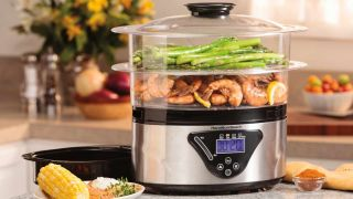 Best food steamers 2020: Electric steam cookers from top brands