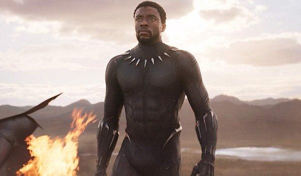 Black Panther Chadwick Boseman Black Panther Marvel