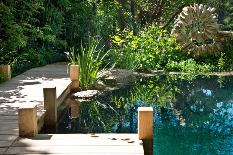 Gardening therapy is good for wellbeing: natural swimming pool by Jo Thompson for the RHS flower show