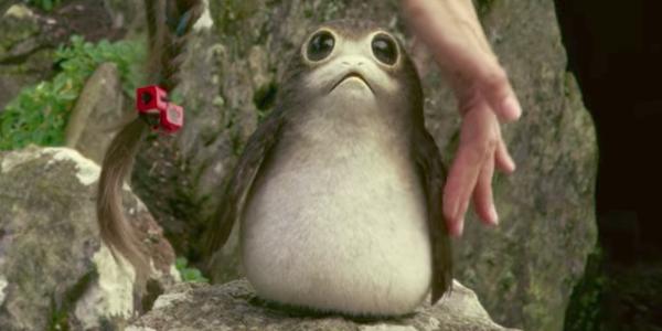 Star Wars puffin alien