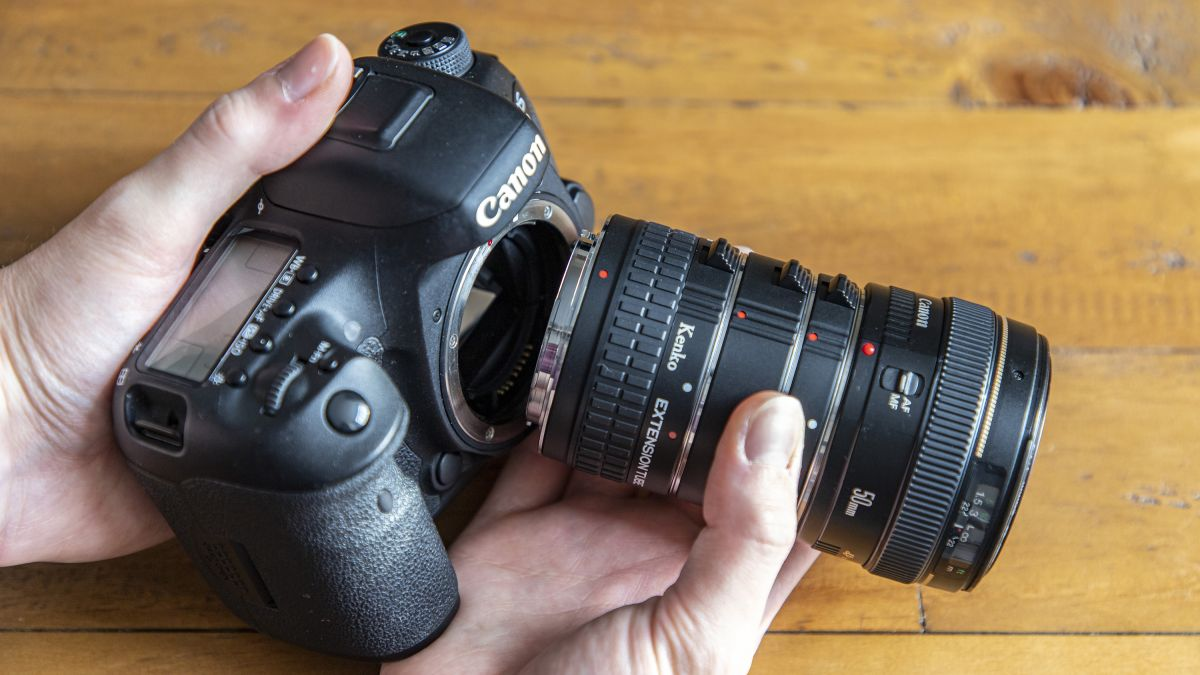 The best extension tubes in 2021: shoot close-ups and macro photos on the cheap