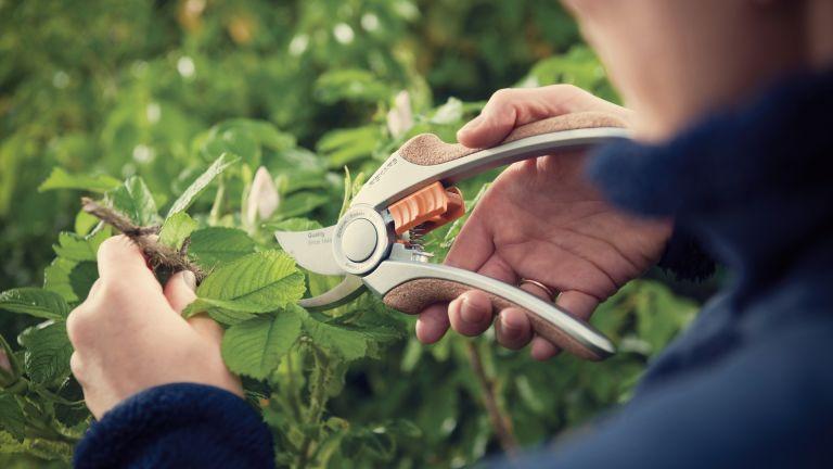 best garden tools 2020: Fiskars Quantum Bypass Pruner