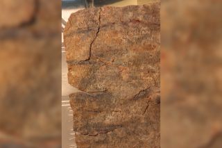 This recently deciphered 1,500-year-old curse tablet is written in Greek on a lead tablet. The curse is directed at a dancer named Manna.