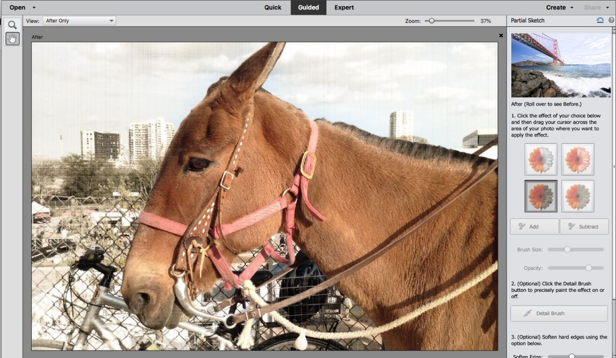 Adobe Photoshop Elements 2019 - Full Review and Benchmarks | Tom's Guide