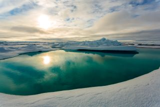 Arctic sea ice melt pond