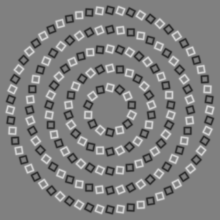 "This ""intertwining illusion"" sends the brain conflicting cues."