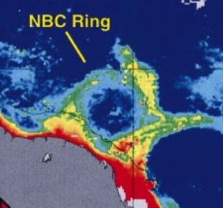 A North Brazil Current (NBC) ring.