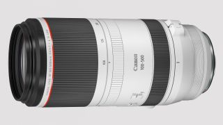 Canon's mirrorless megazooms, including Canon RF 100-700mm