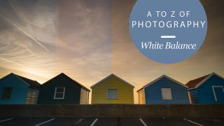 the a to z of photography white balance techradar